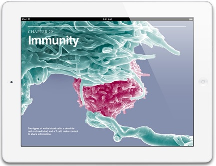 A great product markets itself: Apple's iPad