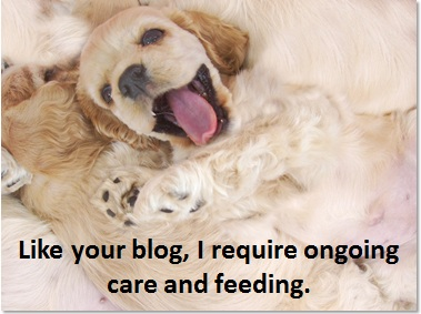 Blogs require ongoing care and feeding