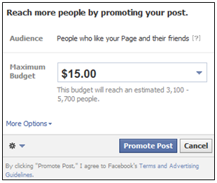 Reach more people with Facebook Promoted Posts